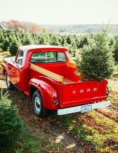 Inspiration Board: A Christmas Tree Farm Wedding