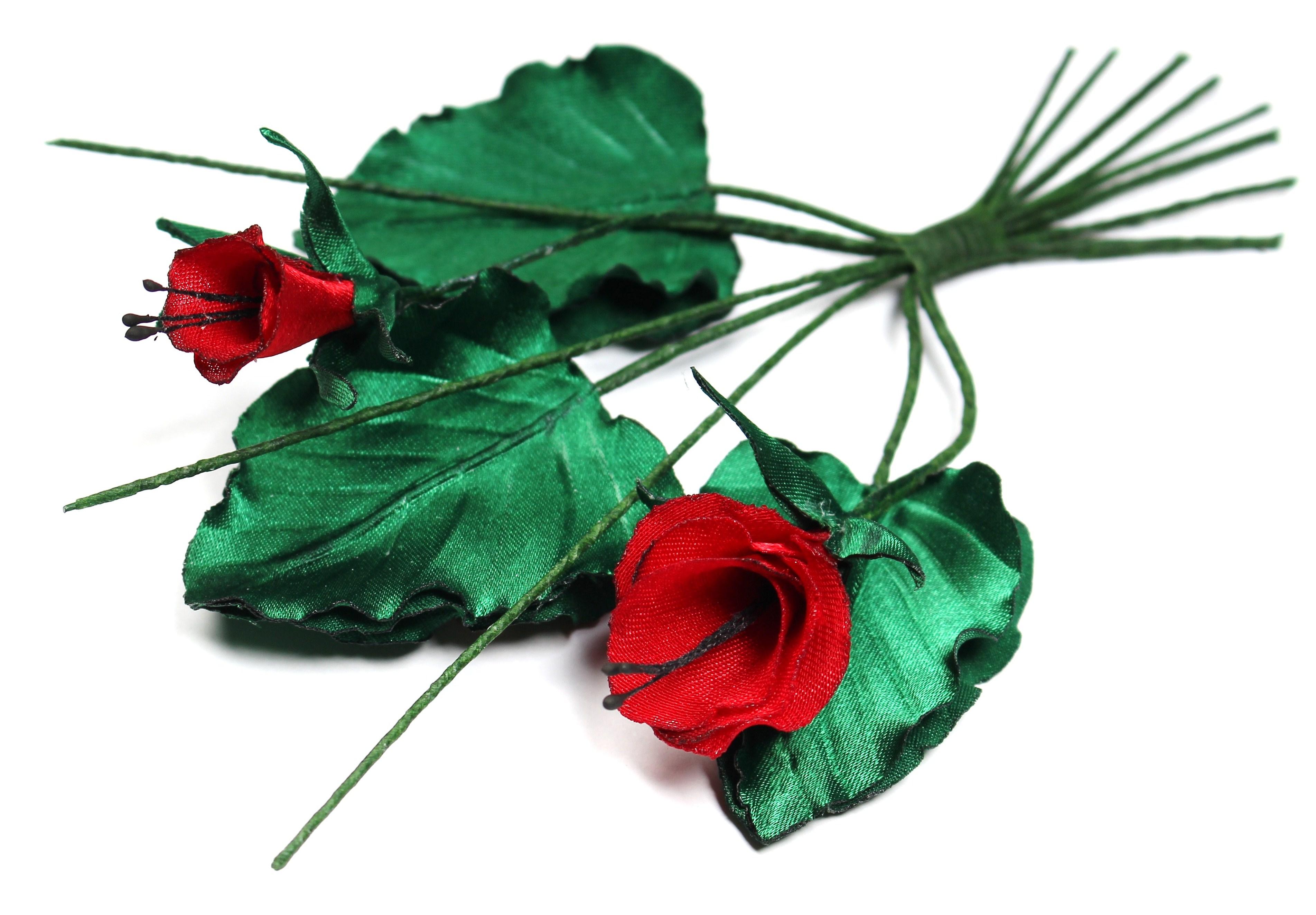 Красные цветы и листья