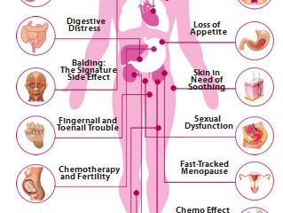 The Side Effects of Chemotherapy on the Body.