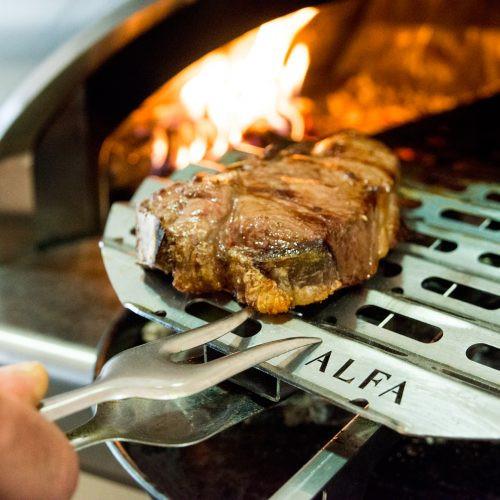 bbq500-with steak.jpg
