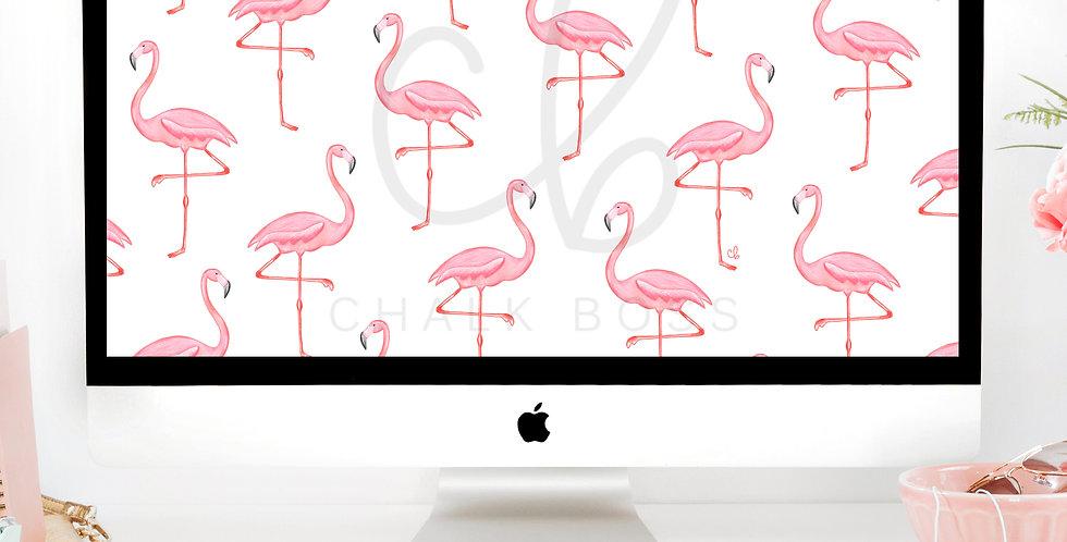 """Pink Flamingo"" Wallpaper Download"