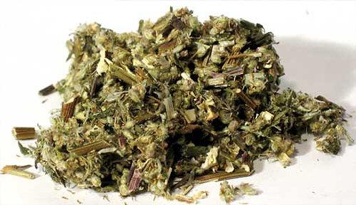 Mugwort 2oz (Artemisia vulgaris)