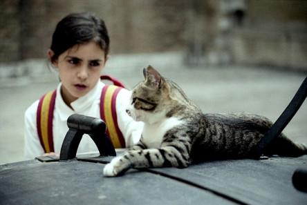 Girl meets cat, Venice 1987