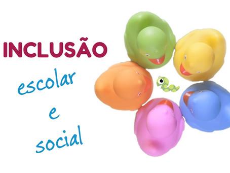 Inclusão escolar e social (vídeo)