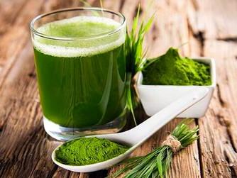 Espirulina, el alga que adelgaza