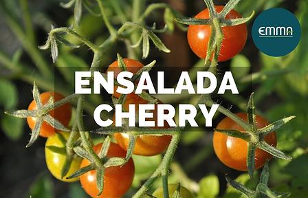 ENSALADA CHERRY (1).png