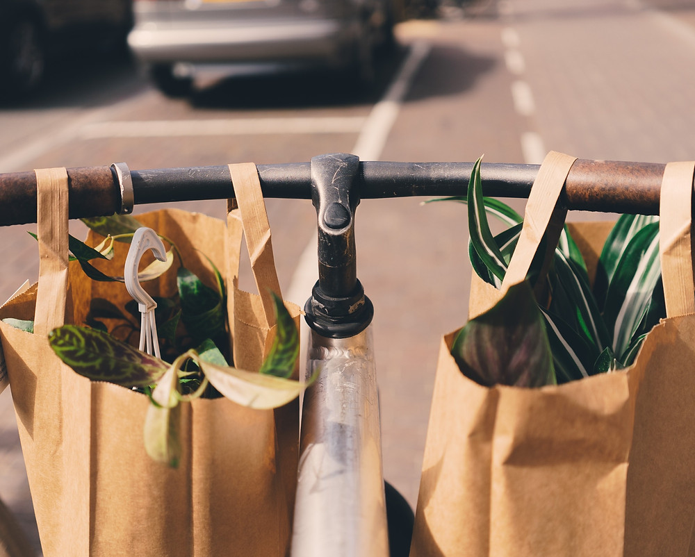 Paper bag with plants on a push bike