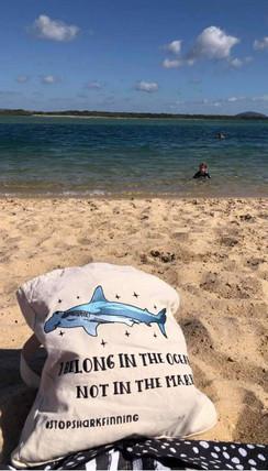 Sunshine Coast Australia