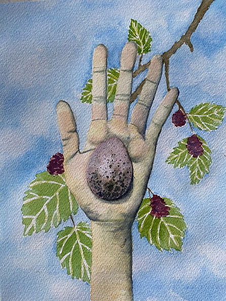 Mulberry Promise