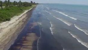 Un derrame petrolero asfixia los frágiles ecosistemas de la costa venezolana