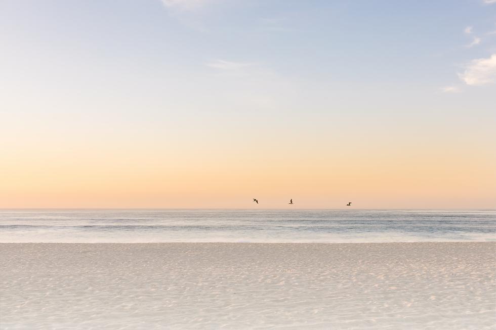 los cabos beach-01-01.png