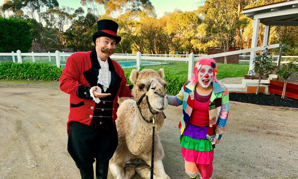 ACME Circus Workshops.