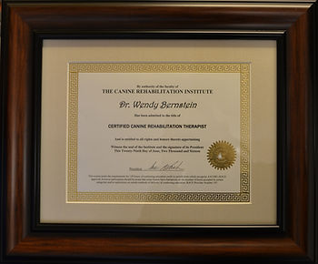Certificate from the Canine Rehabilitation Institute