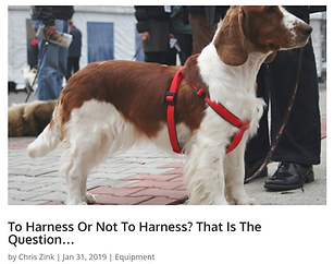 How to use canine harnesses