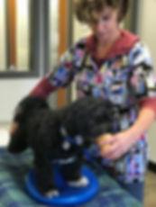 Dr. Bernstein treating rehab patient