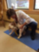 """The """"cookie stretch"""" pet therapy exercise"""