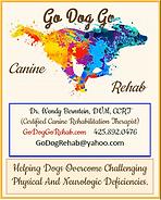 Go Dog Go Pet rehab brochure