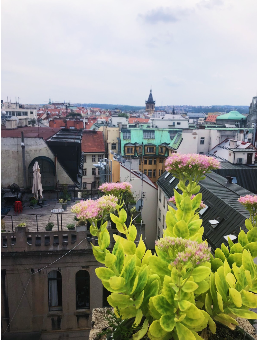 View from Lucerna Rooftop