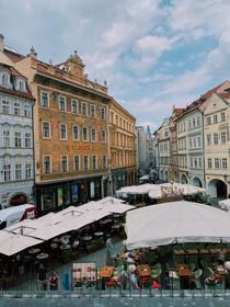 A Letter to NYU Prague