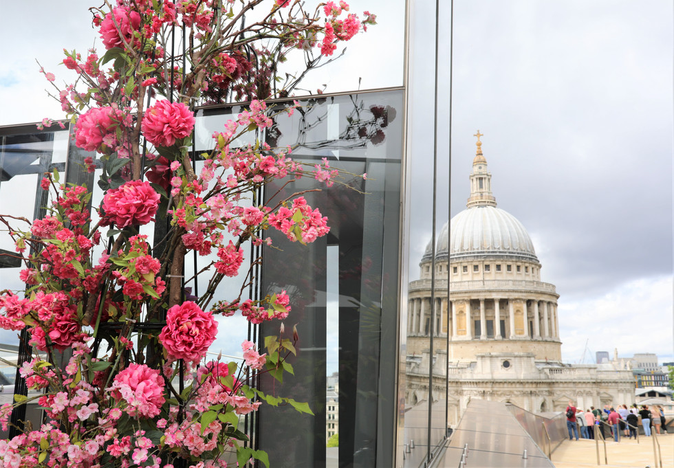 The best view of St. Paul's Cathedral