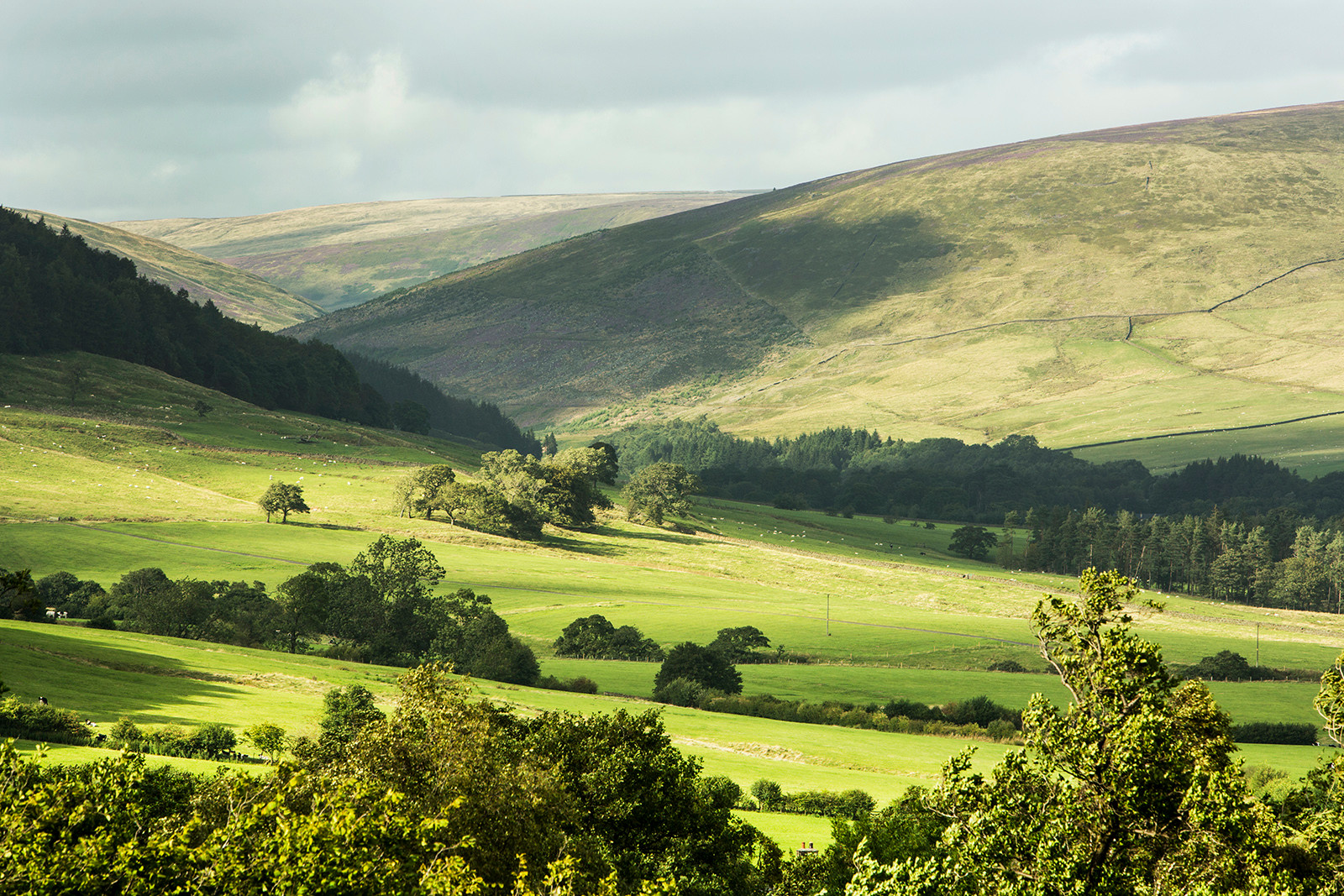 Dunsop valley, Forest of Bowland