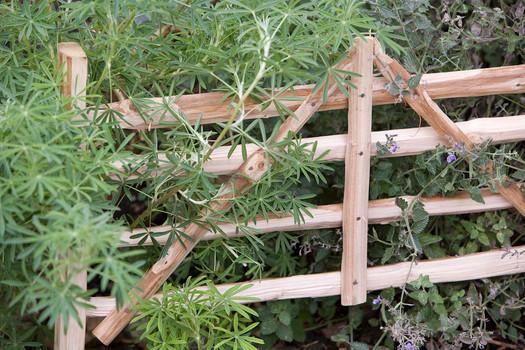 Ash Wicket Garden Hurdle