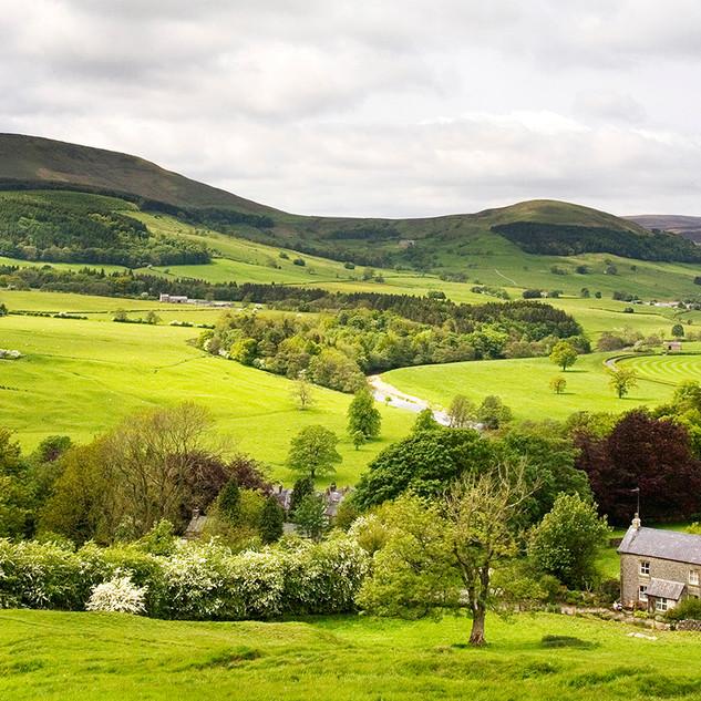 Hodder Valley above Whitewell
