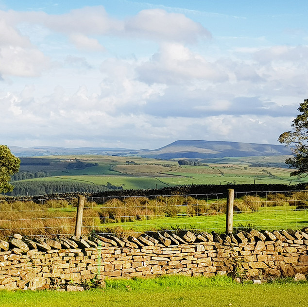 Pendle Hill and the view from Merrybent Hill