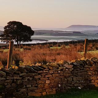 Autumn Dawn at Merrybent Hill