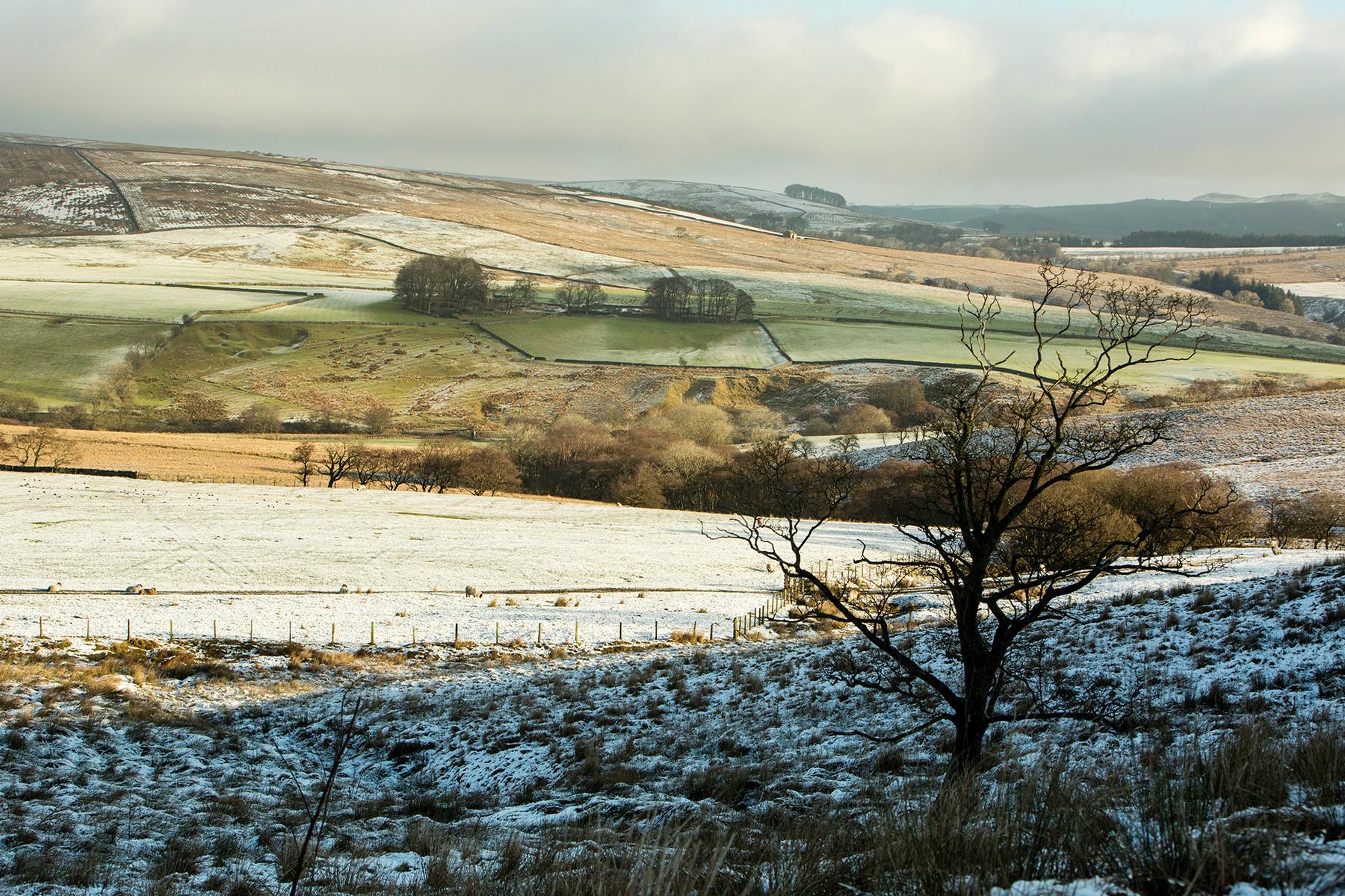 Upper Hodder Valley, Winter