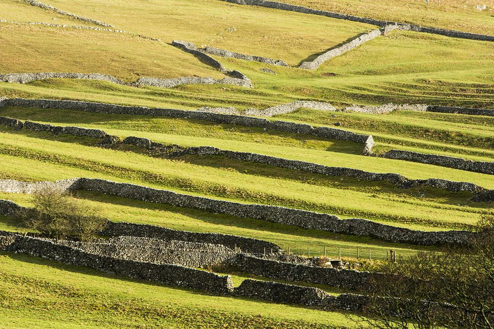 Limestone dry stone walls