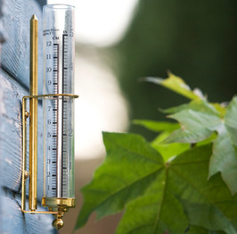 Brass Wall Rain Gauge