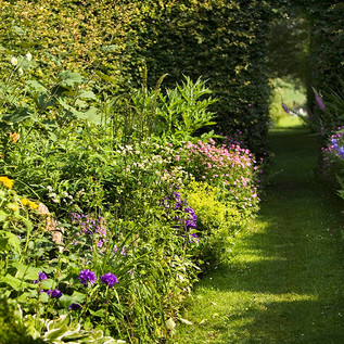 Clearbeck mixed borders