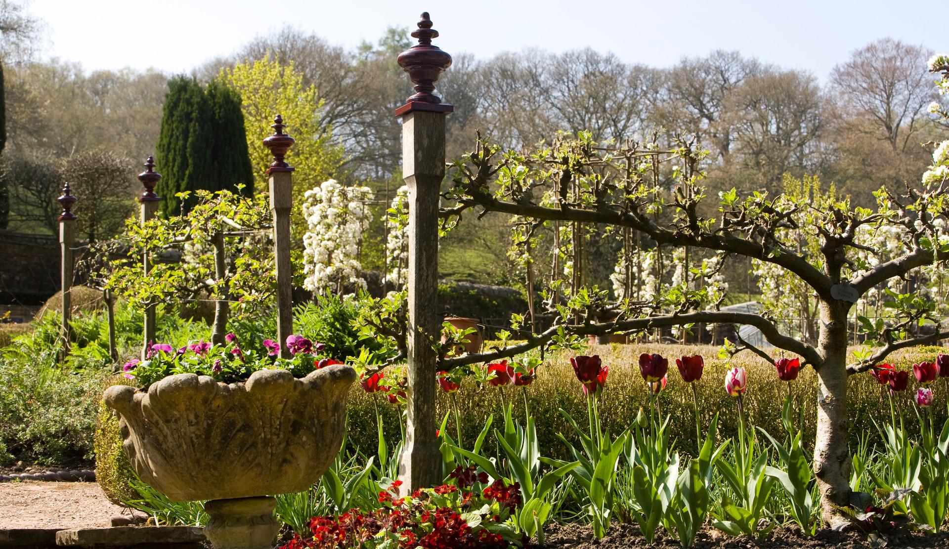 Kitchen garden at Gresgarth Hall