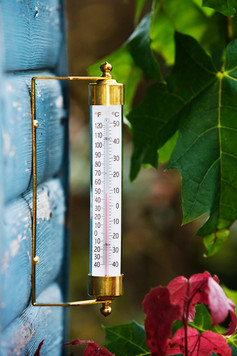 Brass Wall Thermometer