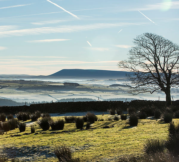 View to Pendle Hill