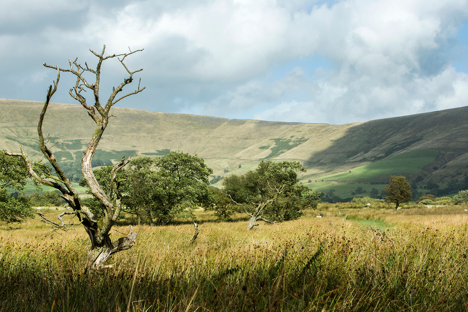 Fair Snape Fell in the Bleasdale Fells outside Chipping