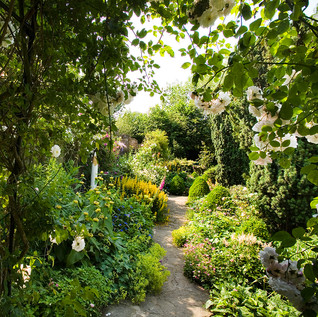 Clearbeck artists garden and pencil