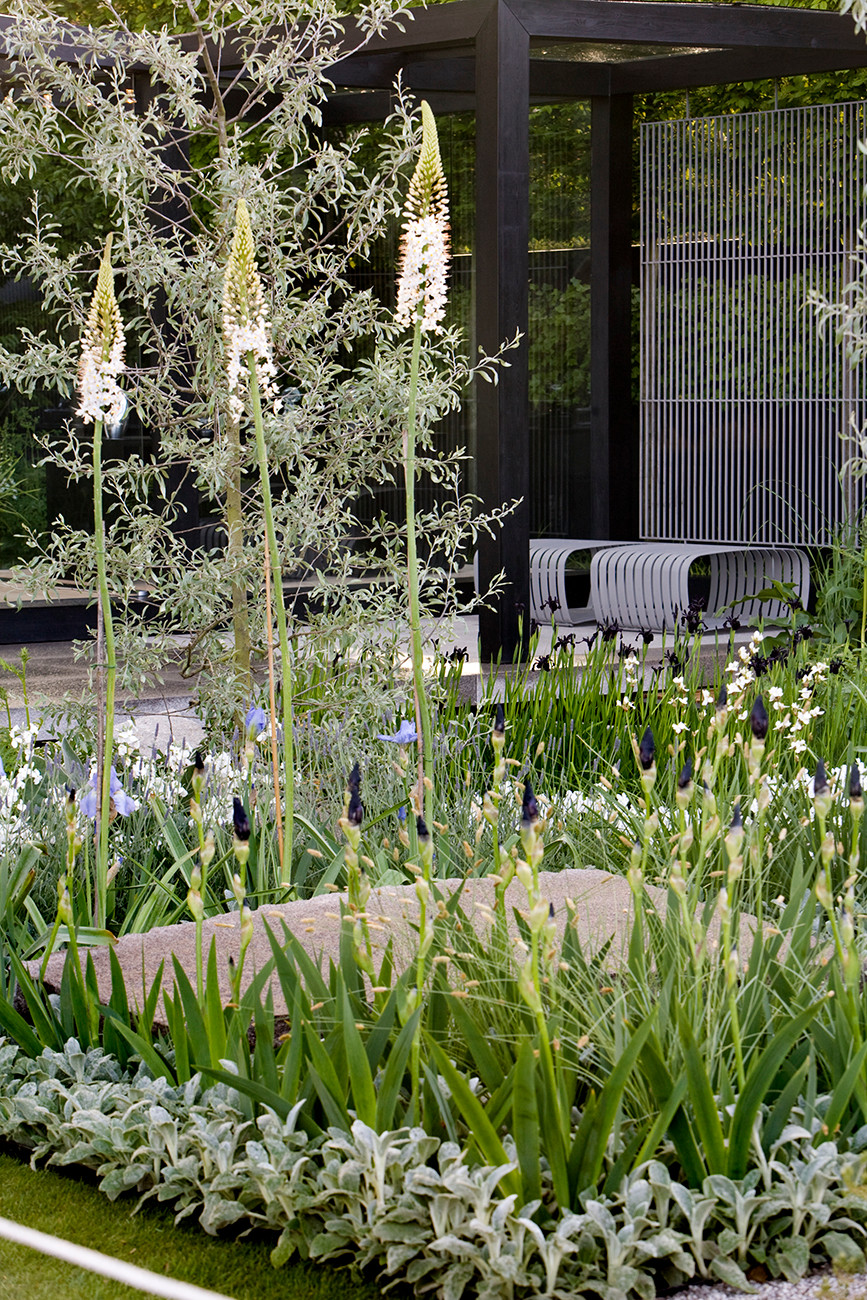 Daily Telegraph Garden by Ulf Nordfjell