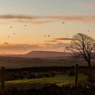 Sunrise over Pendle