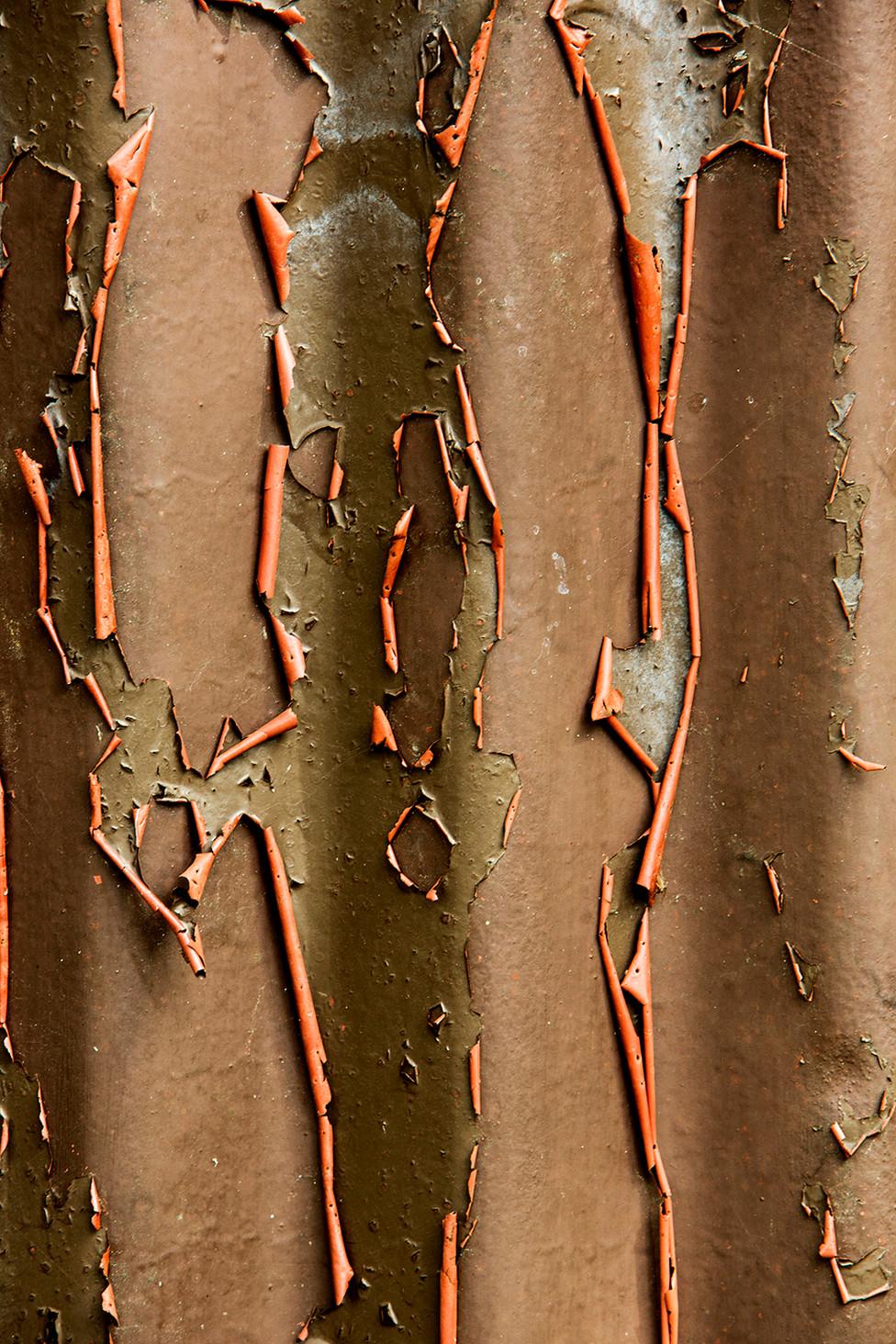 Rust, detail
