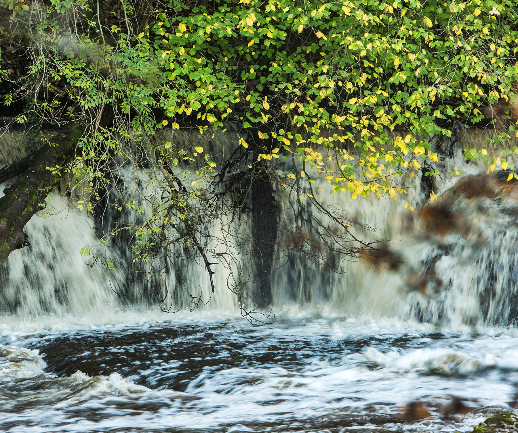 Aysgarth Falls Wensleydale