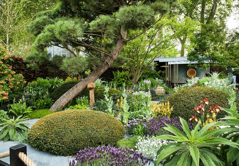 Morgan Stanley Garden, Chelsea Flower Show 2019