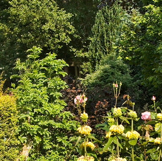 Clearbeck Formal garden