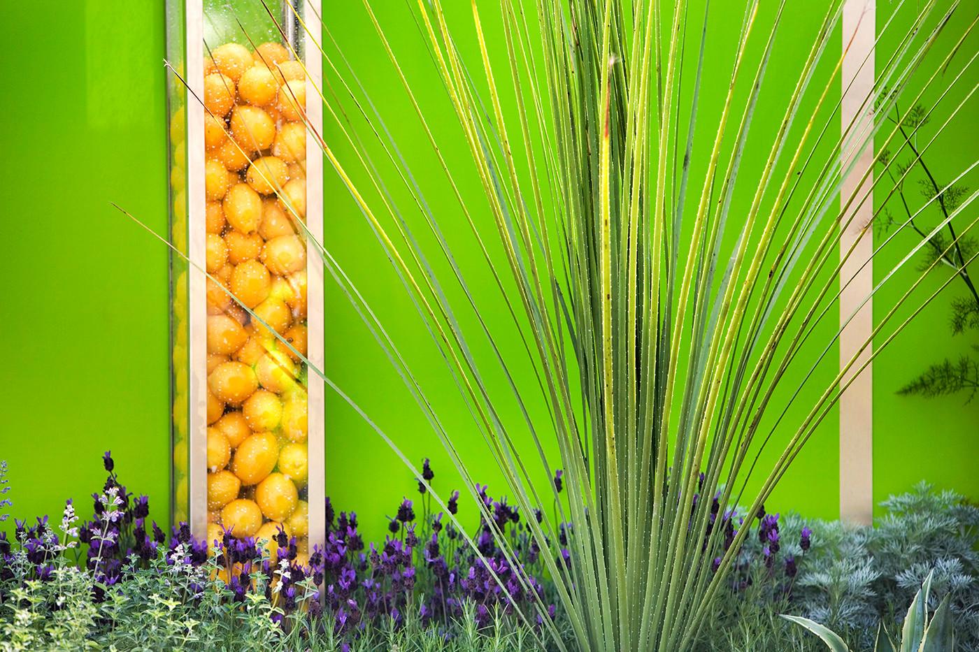 Lemons and lavender