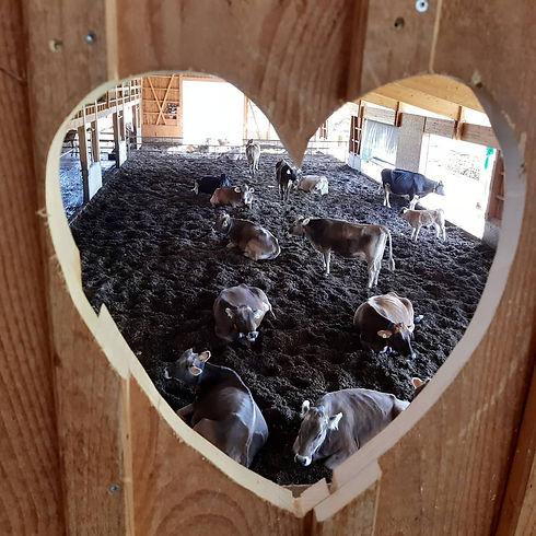 Herzfenster