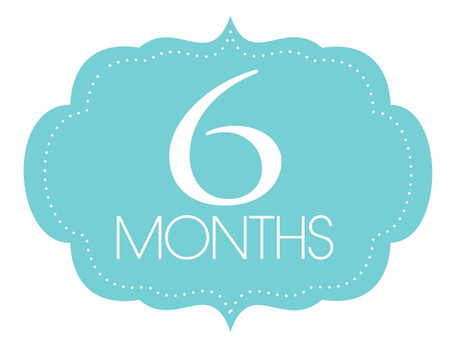 6 Month Unlimited Continuing Education (CE) Plan: Studio CE