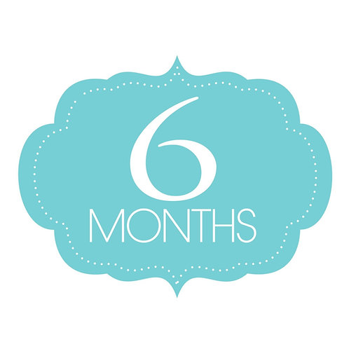 6 Months Unlimited Single User