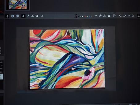 An Art Education