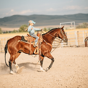 Little Pierces Rodeo